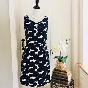 LOFT Navy Polka Dot Cotton Sleeveless Dress